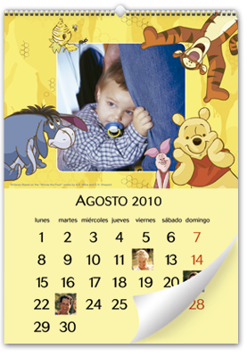 Winnie the Pooh Wall Calendar (30x45)
